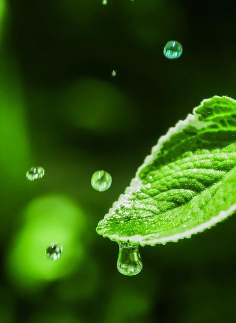 water-drop-1900928_960_720