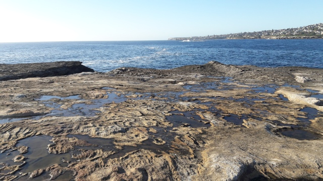 Sydney travel, Sydney beach walk , clovelly beach